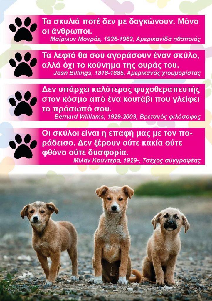 final_dimos_skilia-page-002